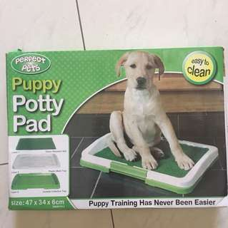 Potty Puppy Pad