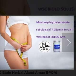Kapsul Pelangsing Biolo WSC isi 60 Kapsul