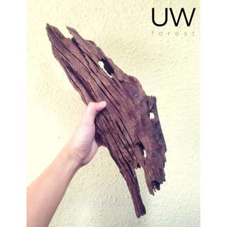 Mangrove Wood Piece