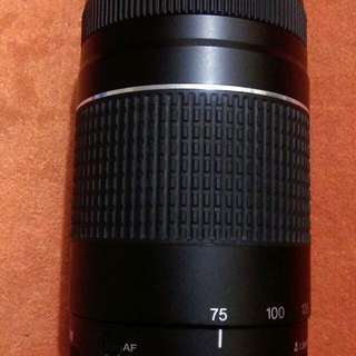 Canon 75-300mm Telephoto Lens (Slightly Used)