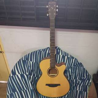 Sunstorm Guitar with bag and tuner