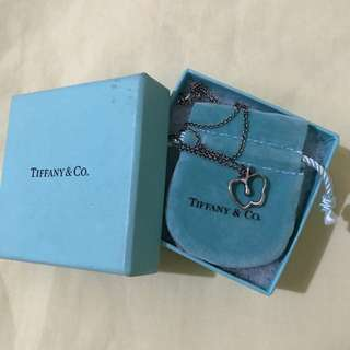 Authentic Used Tiffany and Co Necklace