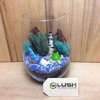 Perfect Gift for Anniversary/ Birthday/ Congrats/ Farewell/ House warming/ Event Gifts- Real Plant Succulents/ Cactus Terrarium