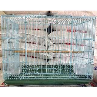 《小型》觀賞鳥籠、鸚哥鳥籠、文鳥鳥籠、牡丹鳥籠,四方鳥籠