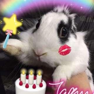 祝各位初七,生日快樂🎊🎉🎉