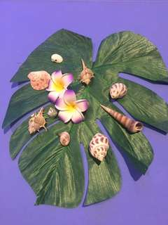 Hawaiian Party Deco