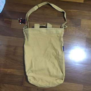 Tote/sling Bag