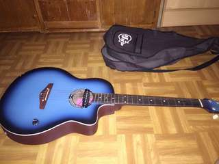Djm acustic and electric guitar