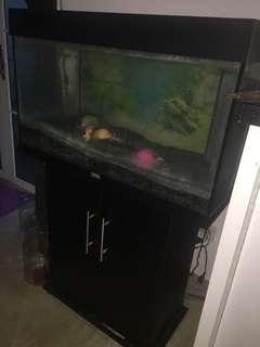 Fish tank with custom cabinets