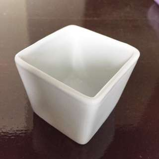 White Succulent Square Pot