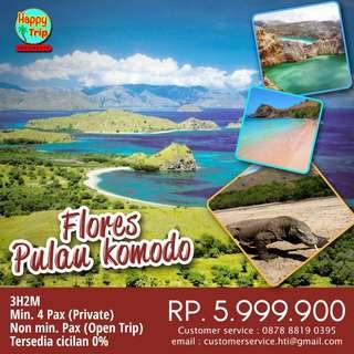 Trip Flores, Pulau komodo