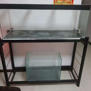 1.5x4 Fish Tank