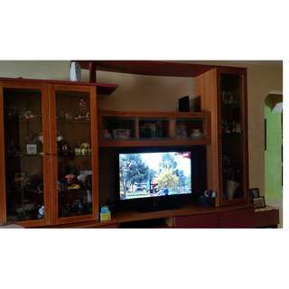 TV Console and Display Cabinet