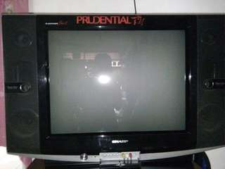 Tv sharp alexander