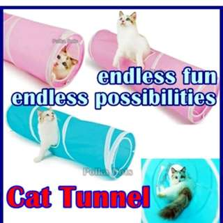 Cat Dog Tunnel