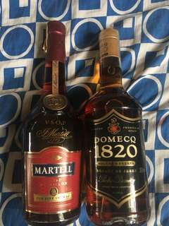 Martell VSOP Medallion w free Domecq