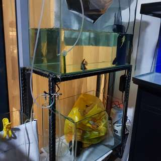 2ft/1.8ft tank with stand