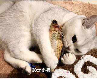 Realistic Fish Toy for cats (click for more details!)