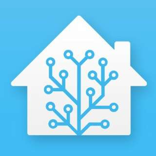 Home Assistant Setup and Consultation