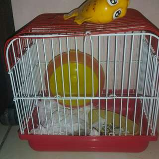Reprice...Kandang hamster+ 1 hamster muda