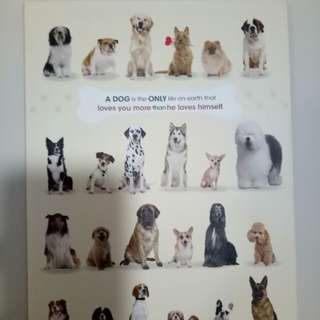 Dog note book