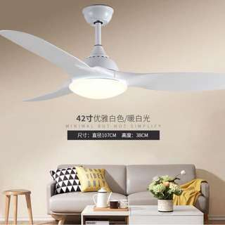 Ceiling Fan (NEW)