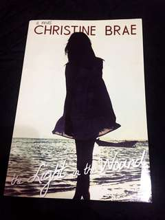 The Light in the Wound by Christine Brae