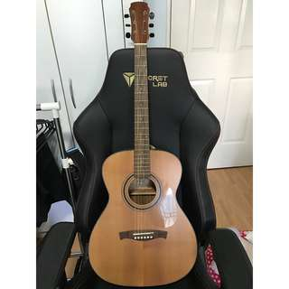 Maestro EO-01 Elite Series Guitar