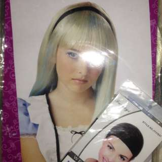 Blonde wig. Free shipping. Never worn!!