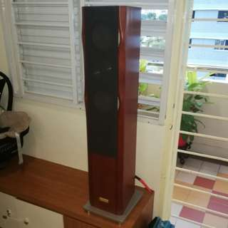 Esoteric MG-20 Magnesium Speakers, Tip Top Condition, Stereo Pair, High End
