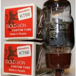 KT66 Genalex – Gold Lion Power Tubes