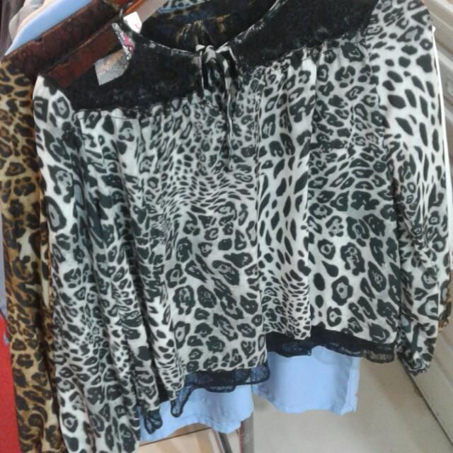 Leopard zhara