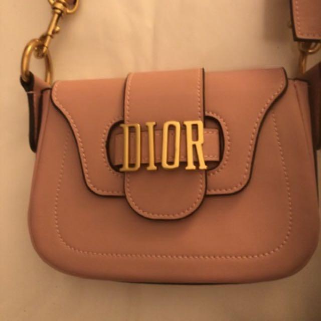 Christian Dior D Fence Saddle Crossbody Bag in Pink