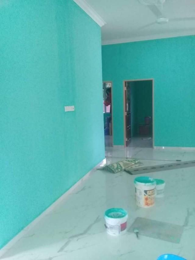 painting cat rumah