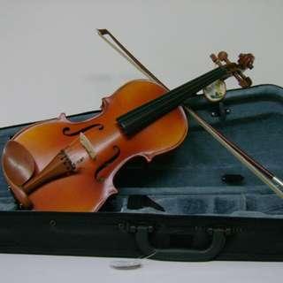 Violin - new size 1/2