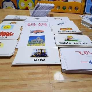 Flash cards (Shichida/ Heguru) right brain training