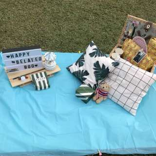 Picnic/Proposal/Birthday setting