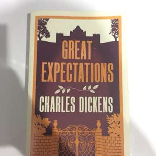 Great Expectations by Charles Dickens English imported novel