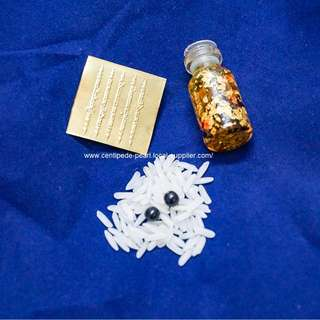 Black Centipede Pearl Amulet (蜈蚣珍珠)