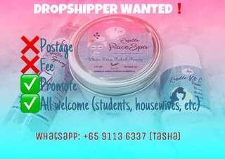 Dropship wanted