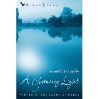 A Gathering Light (Jennifer Donnelly)
