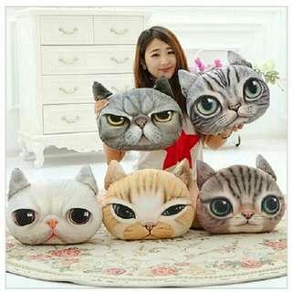 Pillow cats