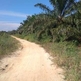 Tanah dijual di jalan Arifin Ahmad kota Pekanbaru