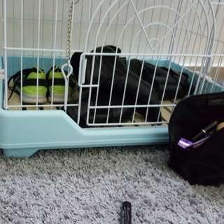 cage pretty big