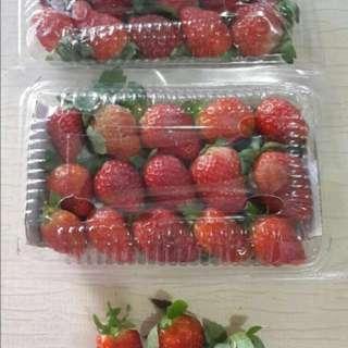 Strawberry Bandung