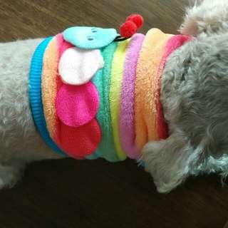 Rainbow彩虹蟲蟲狗背心