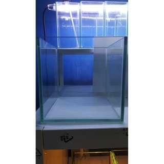 Black Outline Fish Tank