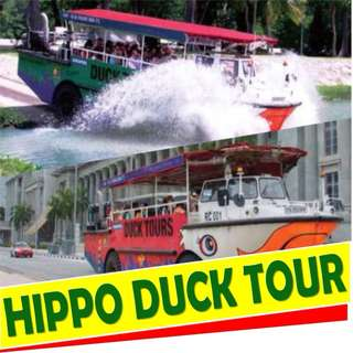HIPPO DUCK TOUR