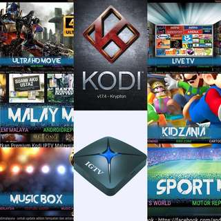 One time payment IPTV for Singapore/Malay users IGTV android box best content box