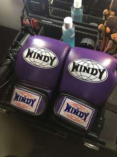 PURPLE BOXING GLOVES (WINDY)